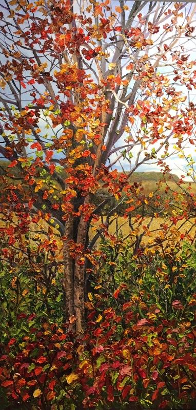 Autumn-Ascending