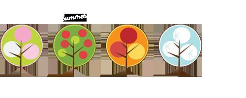 Four seasons of charming